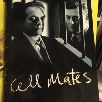 Shaun Gibson, Cell Mates Programme